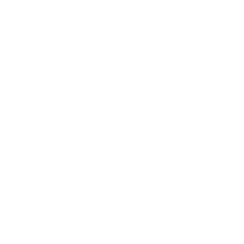 Logo-wit-trans
